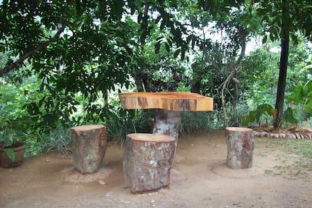 Ellamale Bungalow - Wattegama