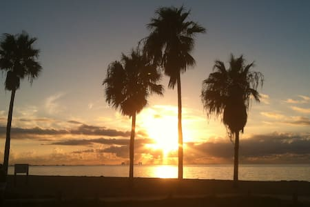***BEAUTIFUL BEACH FRONT CONDO now only $99*** - Corpus Christi
