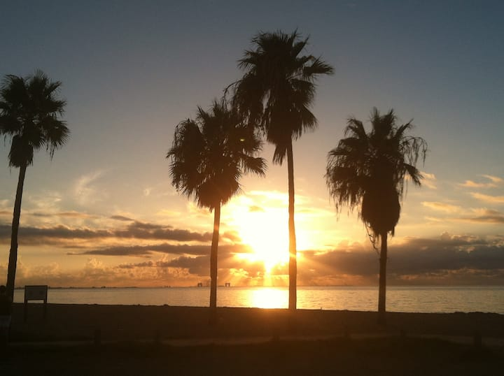 BEAUTIFUL BEACH CONDO Waterfront ***** 5 Star View