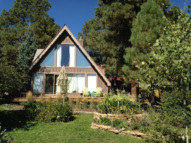 2 bed 2 bath Mountain Chalet just off Lake Pagosa - Pagosa Springs - House