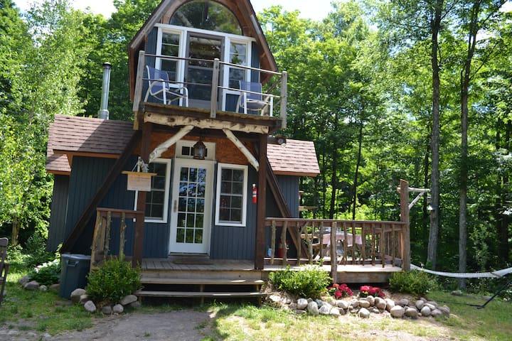 Wilderness White Birch Cabin on Private Lake