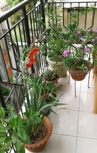 Enjoy tropical life in Assam no 2!! - Guwahati - Apartment