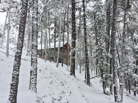 Hiker's Cozy Cabin at Copper Canyon area.