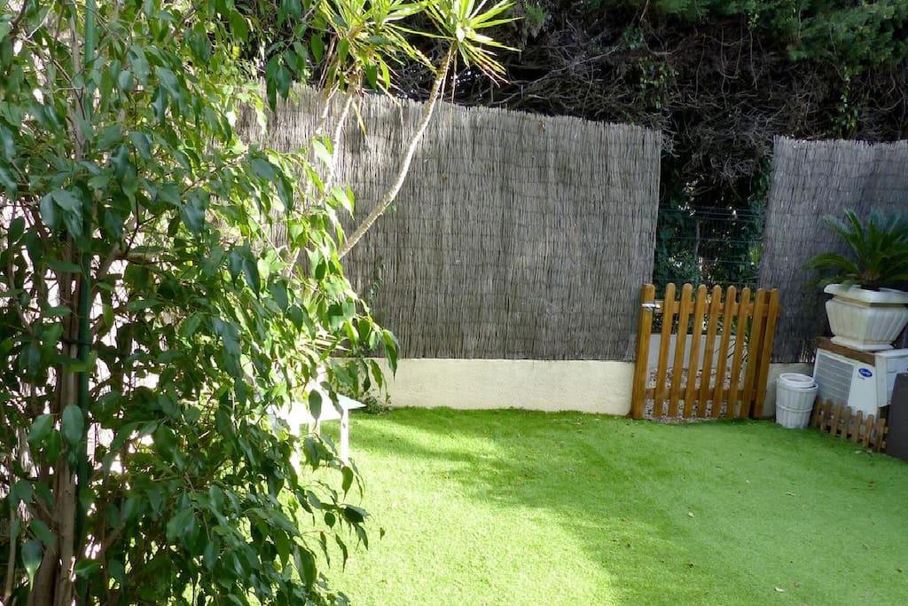 Nice green plants in the garden