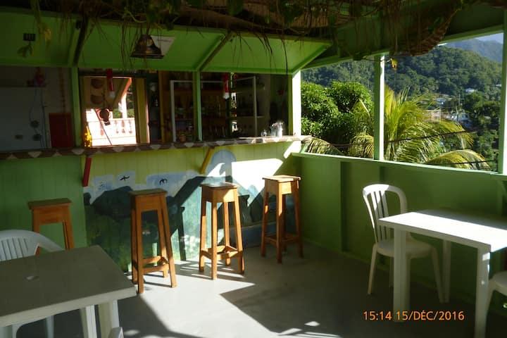 Room  in Top View Appt /close to Roseau