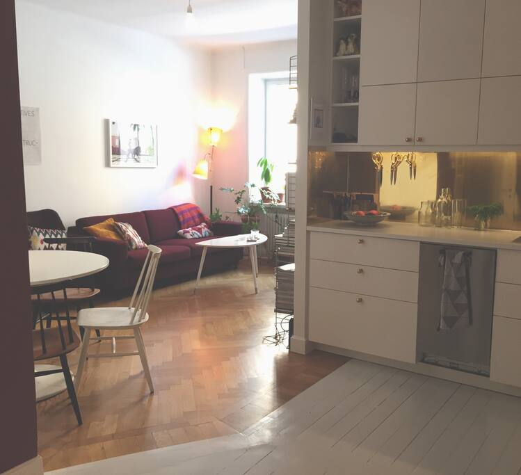 40square meters but open and airy