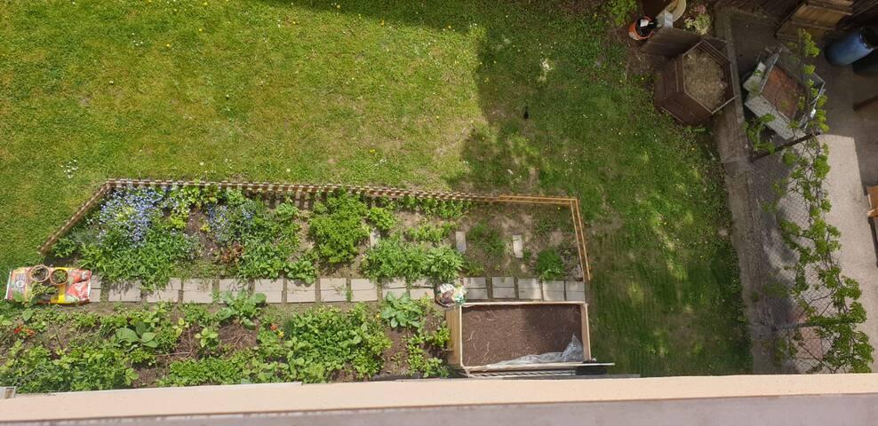 Blick zum eigenen Gemüsebeet Nettes Zimmer für Studentinnen im Senkelbachviertel nähe Wertachbrucker-Tor-Straße