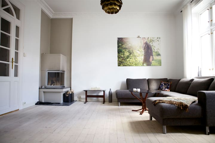 Spacious and super central - Oslo - Daire