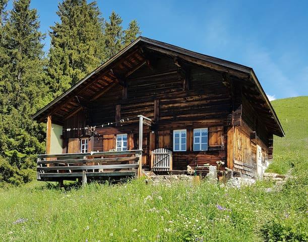 Kleine Alphütte im Simmental