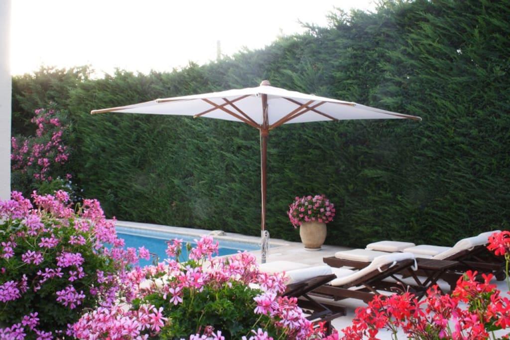 Villa avec piscine et jardin clos. BBQ, transats, draps de bain fournis
