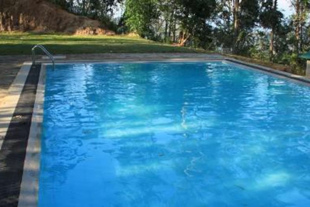 Jungle Tide Coot Room In The Hills Near Kandy Bed And Breakfasts For Rent In Uduwela 20164