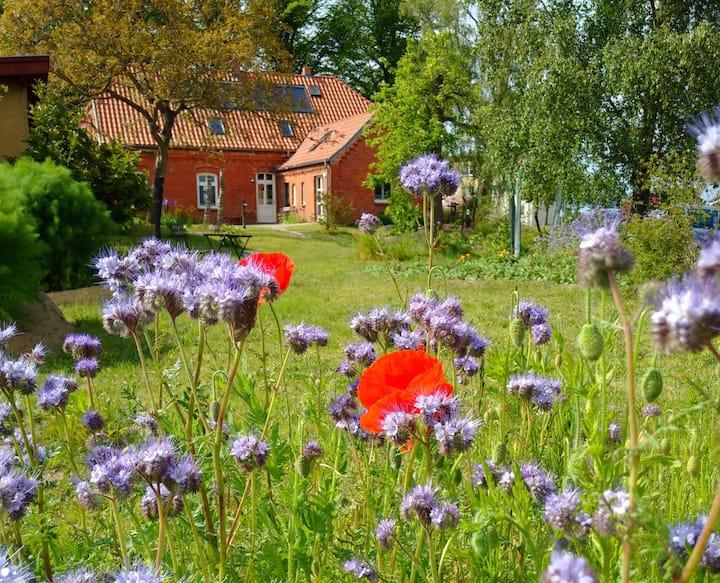 Gartenwohnung im Kunsthaus Stove an der Ostsee