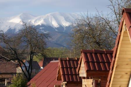 Transylvanian Guesthouse near Sibiu - Porumbacu de Sus