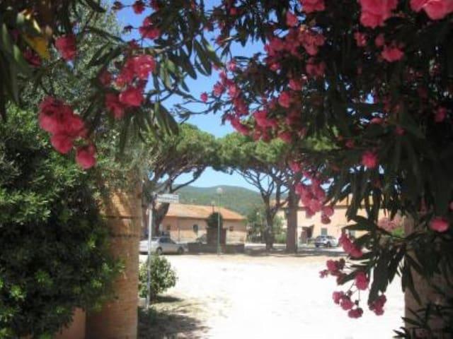 """""""La Corte"""" Holiday House - Pian di Rocca - Apartment"""