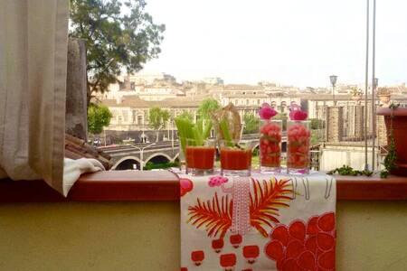 Mansarda al centro di Catania - Catania - Apartment