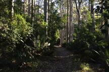 Bush trails start just 1-2 minutes from the front door
