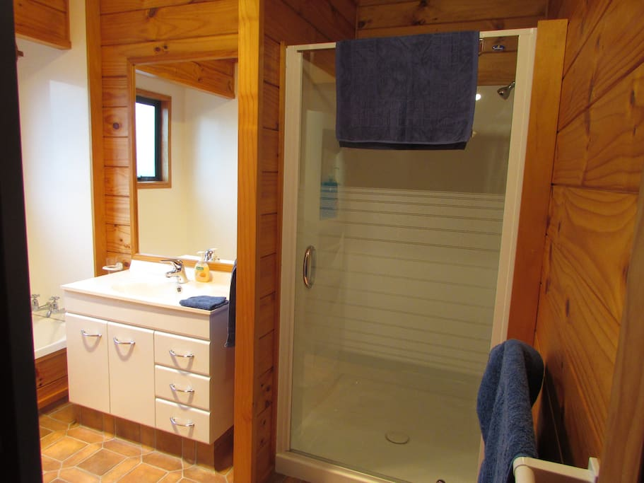 Shared guest bathroom with bath and large shower