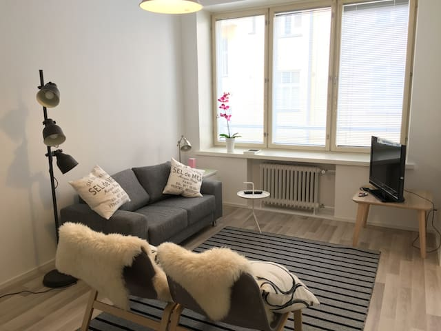 Spacious and superbly located studio - Helsinki - Appartamento