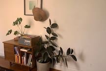 Large room in bright, plant-filled Fitzroy Terrace