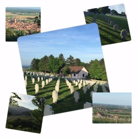 Cimetière allemand suite à la seconde Guerre Mondiale dans lequel plus de 5500 soldats reposent en paix. A 20 minutes seulement du gîte, vous pourrez profiter d'une promenade sur les hauteurs du Grasberg.