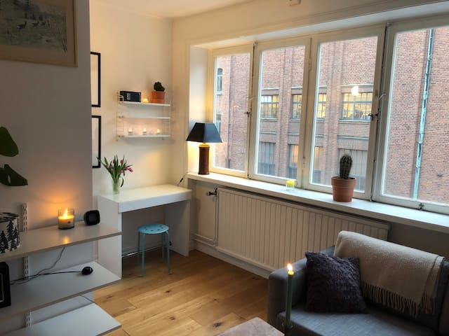 Awesome Flat in Central SOFO