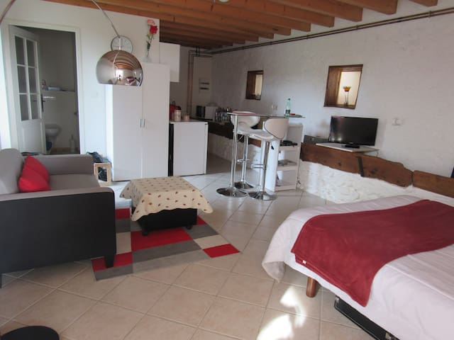 Nice équipped apartment 30 sqm - Cessieu - Apartamento