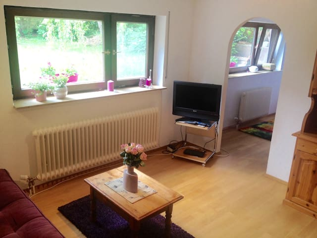 Lovely flat, next to Stein am Rhein - Öhningen - 公寓
