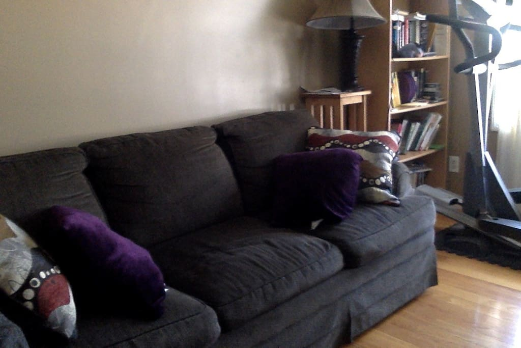 Spare room- couch and aero bed available