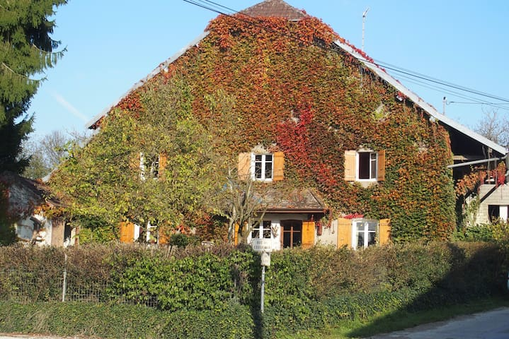 maison de village sur terrain clôt - Santans