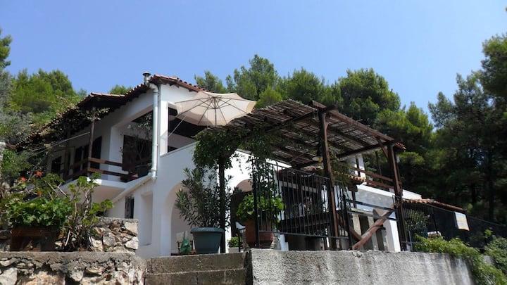 Alonnissos sea view apartment 360176