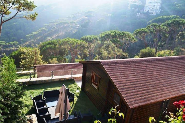 Pineville Lebanon 1 Bedroom Chalet - Broumana - Hytte (i sveitsisk stil)