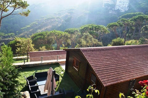 Chalet 1 Bilik Tidur Pineville Lebanon