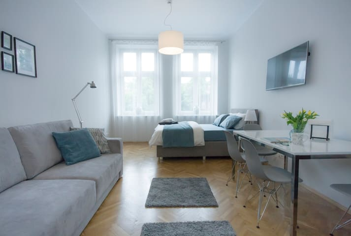 Dreaming Apartment near Wawel Castle