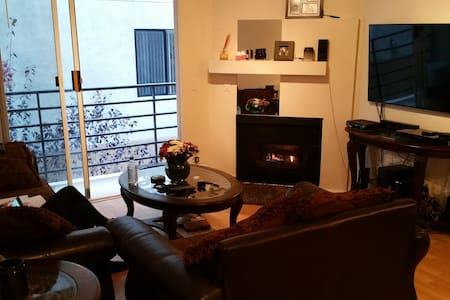 (Modern 2bed, 2bath) RENTING - 1 bedroom, 1 bathroom, living room, kitchen, fire place and balcony. Amenities: Wi-fi, Full Cable Package, Access to two Pools, 3 Jacuzzies and two gyms, 2 Parking Spaces.  Dog and Cat live in the unit.