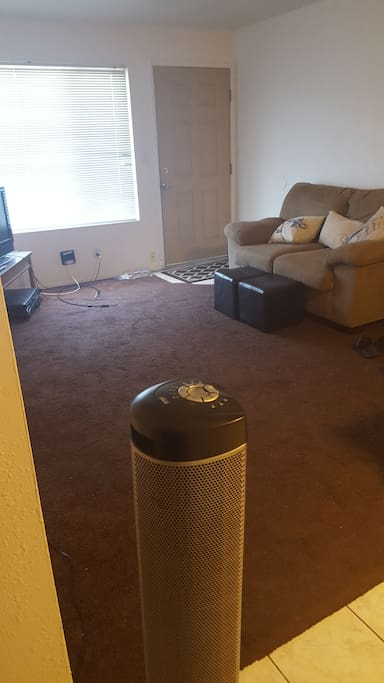 Spacious living room. Chromecast included. Comfortable couch could sleep another person.