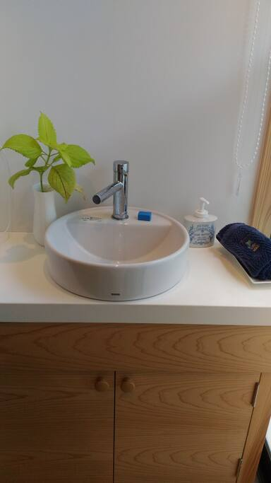 Guest's private bathroom.