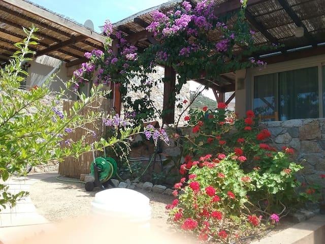 Casa  vacanze all'insegna della tranquillità - Aregno