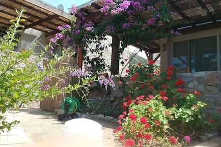 Casa  vacanze all'insegna della tranquillità - Aregno - Rivitalo