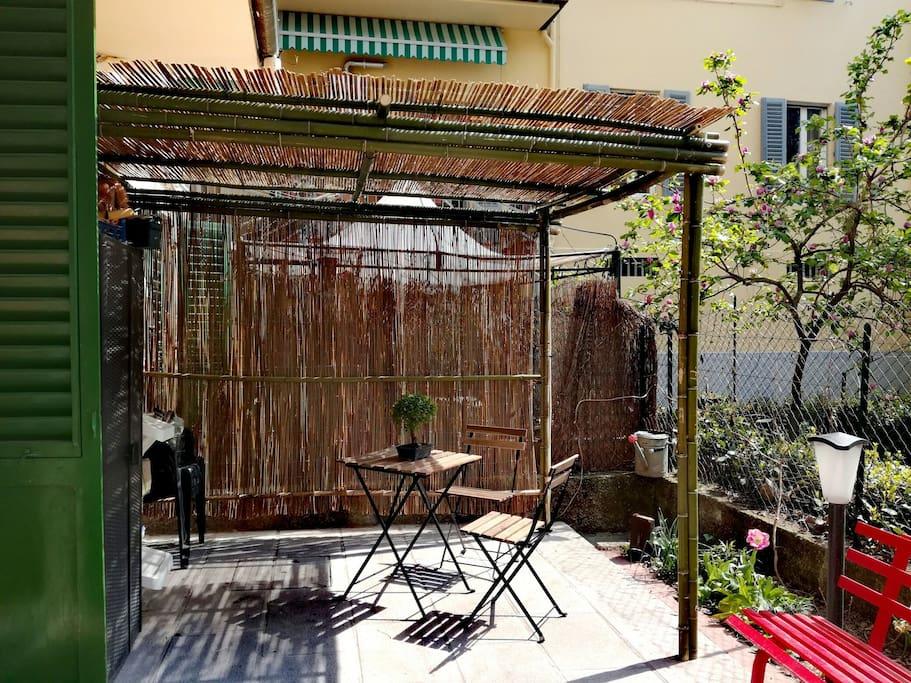 The bamboo gazebo
