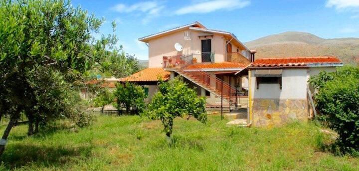 Apartment House Detached