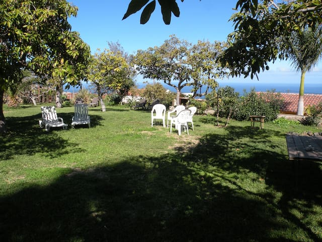 Garden to Relax and enjoy the views