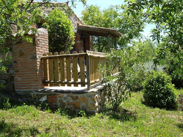 Small house Tajo Natural Park / Tae - Valencia de Alcántara - Kulübe