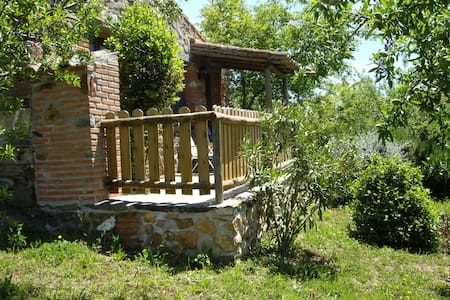 Small house Tajo Natural Park / Tae - Valencia de Alcántara - 통나무집