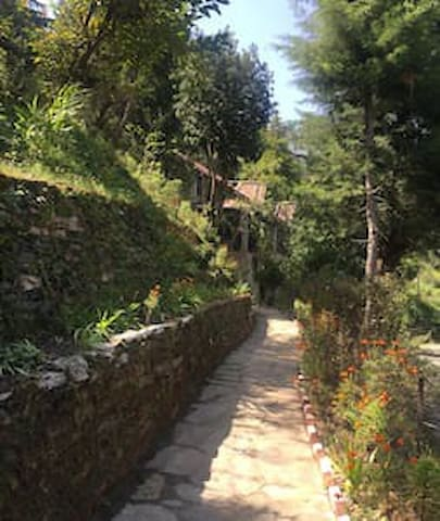 Path from the main gate to the cottage