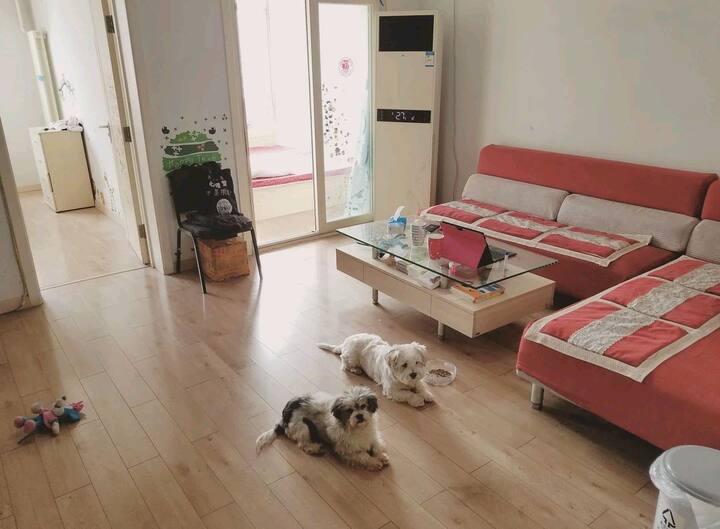 Dove 's Nest (cozy flat in a big neighborhood)