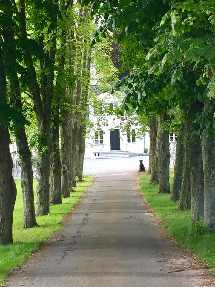 Ballegård - Liebhaver gård