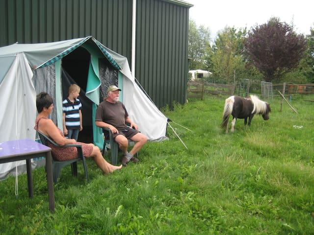 Kamperen in een tent tussen de dieren. - Boerakker