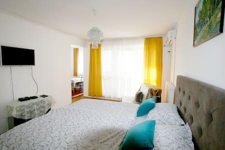 Sandra apartment Belgrade,  Free parking !!!!