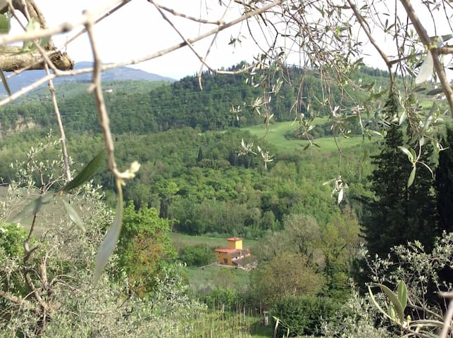 Room & garden in Florence country - Pelago - Huis