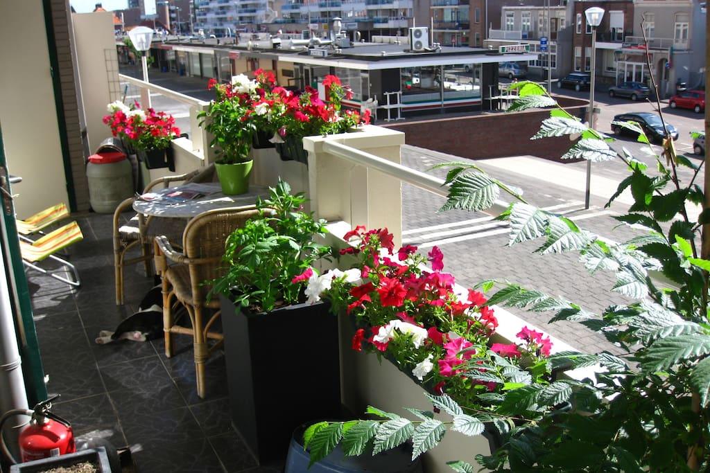 breakfast on balcony with sunrise
